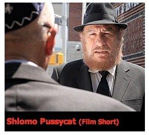"""""""Shlomo Pussycat"""" by an emerging filmmaker,  Michael Feinstein"""