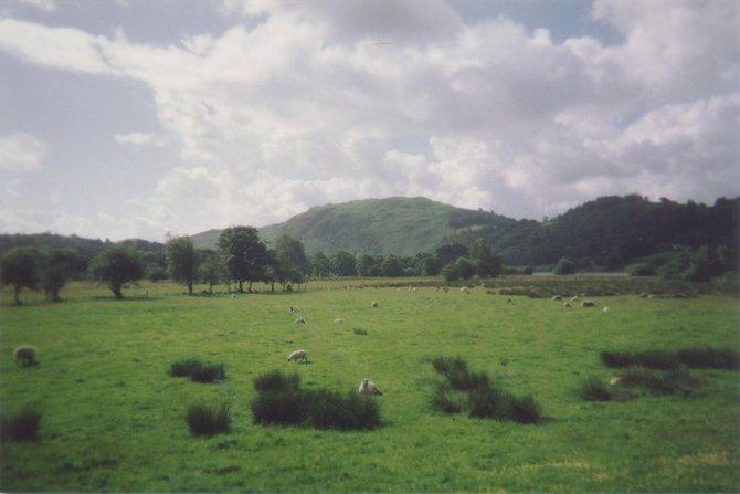 Pastoral scene in England's Lake District.