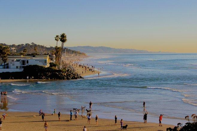 Del Mar Photo Dog Beach California