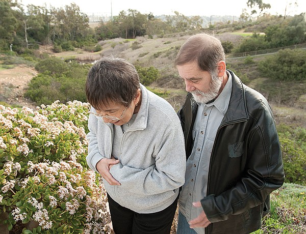 Robert Garner, with his wife Mary Ann, worries that SDG&E cameras installed nearby allow strangers to peer into his backyard and house.