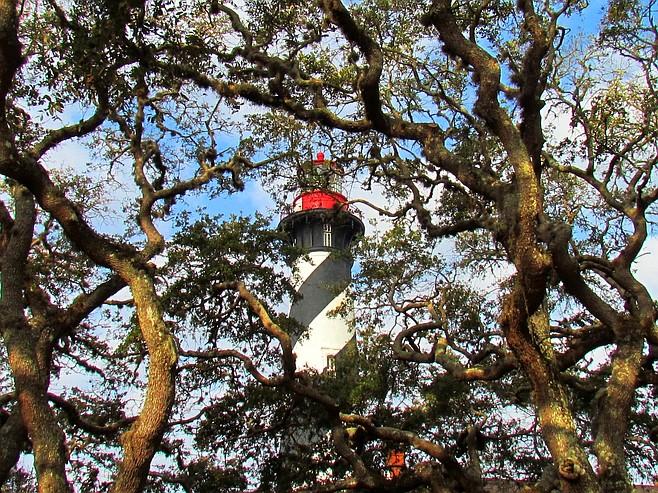 St. Augustine Lighthouse through the oaks.