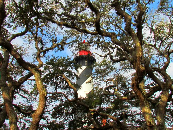 St. Augustine Lighthouse through the oaks.