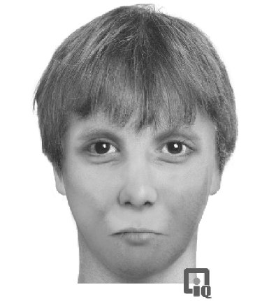 Suspect sketch accompanying a December 28 release