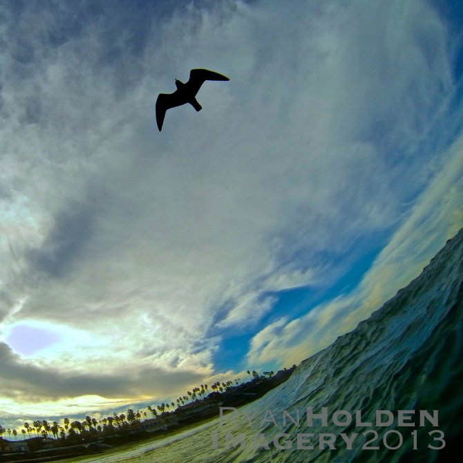 This was an early-morning shot from Windansea Beach in La Jolla.  I captured this bird flying overhead between swells!