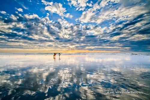 Tourmaline Canyon Surf Park- Pacific Beach, CA 92109
