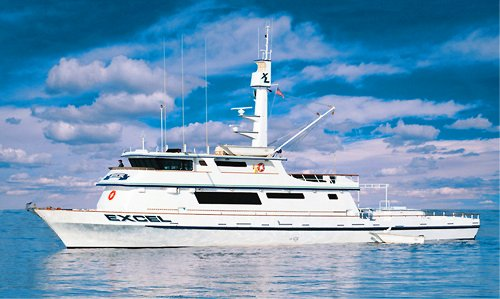Bill Poole's 'Excel' is just one of the many superlative members of San Diego's long range sportfishing fleet that regularly prowls the Baja coast in search of big gamefish.