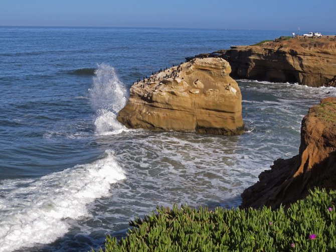 Sunset Cliffs 2013