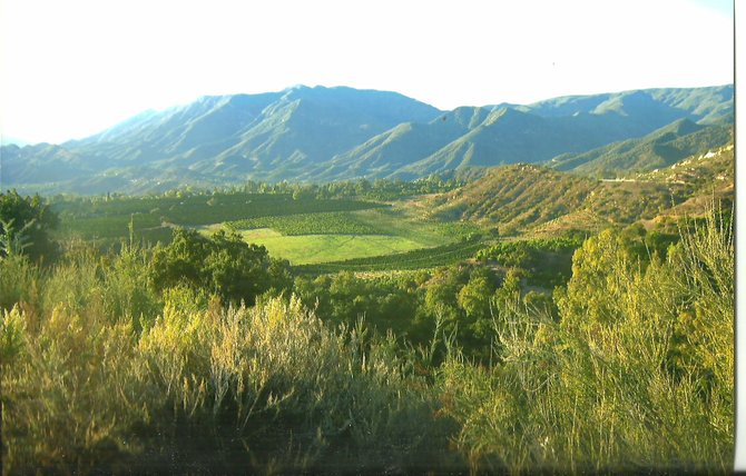 Picture-perfect view of the Ojai Valley.