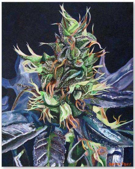 Cannabis art by Anita Toke