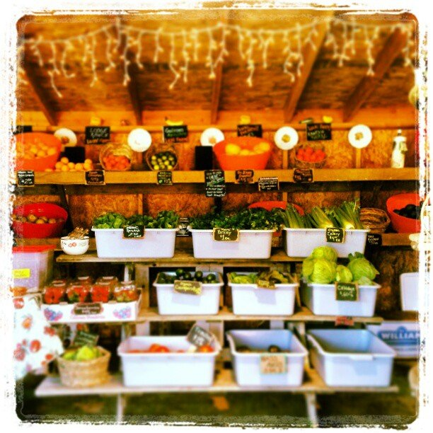 Local produce stand at Sunshine Gardens, Encinitas