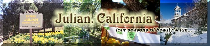 Note prominent use of daffodils in Julian website banner