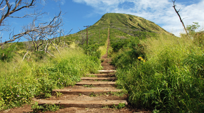 Breathtaking Views Of Oahu Are Waiting.