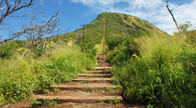 Breathtaking views of Oahu are waiting...