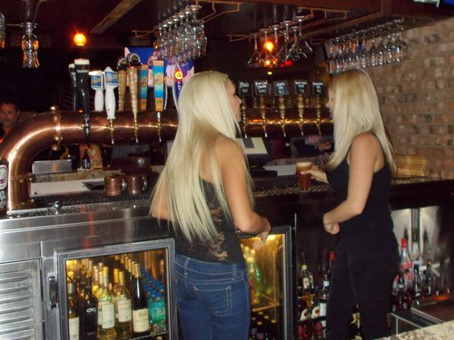 Barkeeps at the cool tap tube in the main bar
