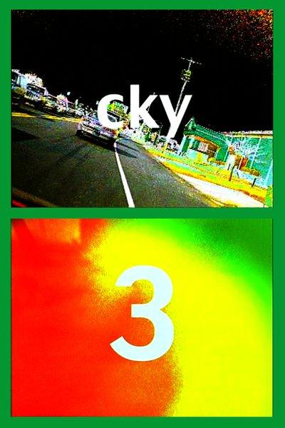 """Bam Margera's """"CKY 3"""" (2001)."""