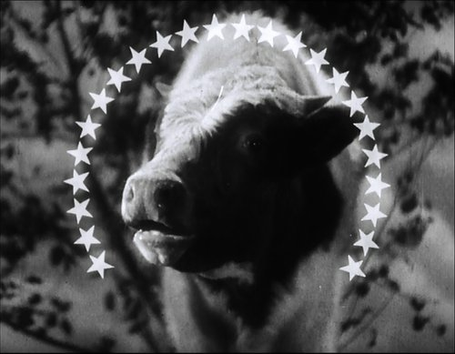"The Paramount Moooo-untain. ""The Milky Way"" (1936)."