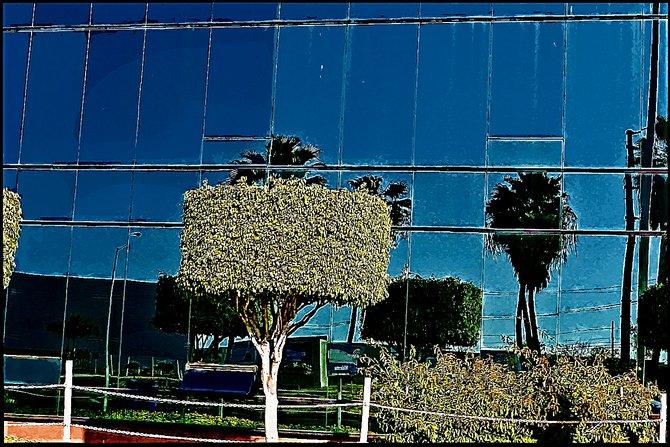 Neighborhood Photos TIJUANA,BAJA CALIFORNIA Glass facade en Otay section of Tijuana/ Fachada de vidrio en area de Otay en Tijuana