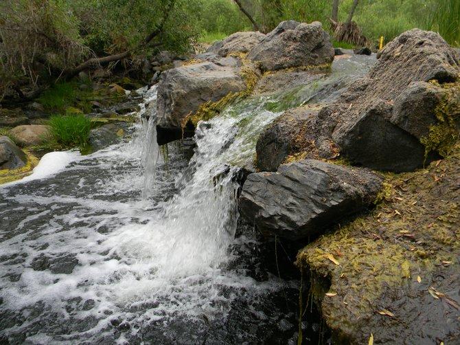 Mission Gorge Trail Running Stream.