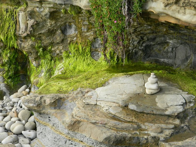 Local travel: rock stack and vibrant green moss at Sunset Cliffs.