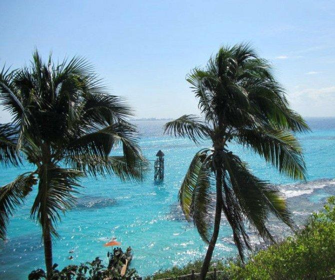 Isla Mujeres El Garrafon Reef