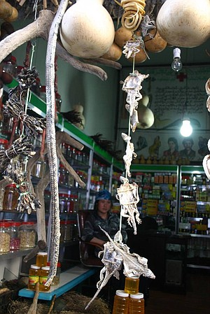 Snakes and lizards in an Uyghur apothecary shop.
