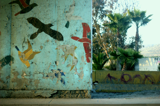 Cracked yet beautiful, this wall in the Tijuana border reveals true beauty through rustic times.
