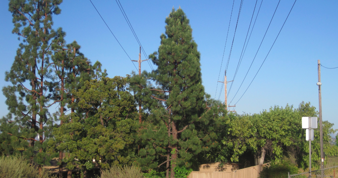 Overhead electrical transmission lines at Pasatiempo open space in Del Cerro