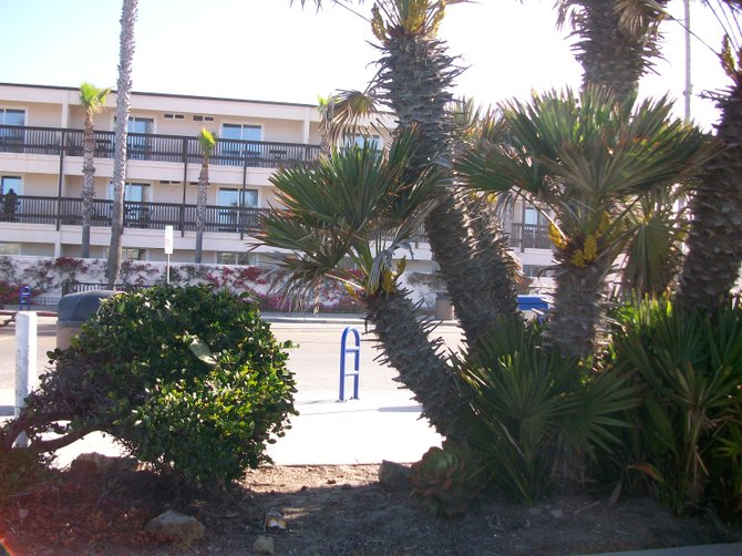 Ocean Beach Hotel--viewed from the parking lot across the street on Newport Ave.
