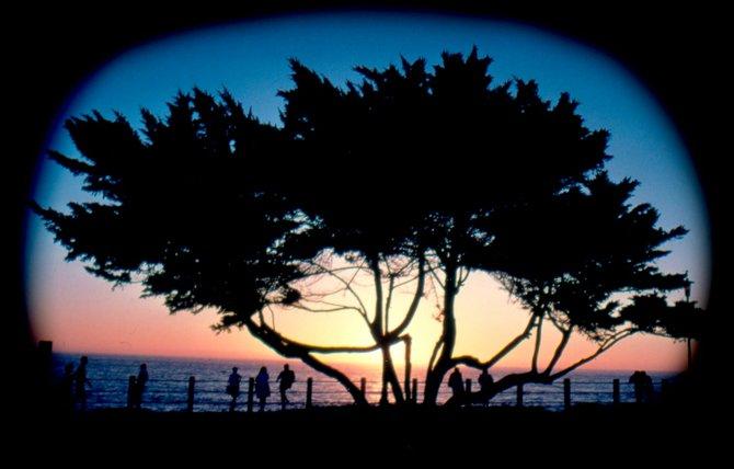 La Jolla Cove. Photographer: Robert Chartier