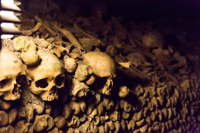 Bones and skulls, skillfully arranged
