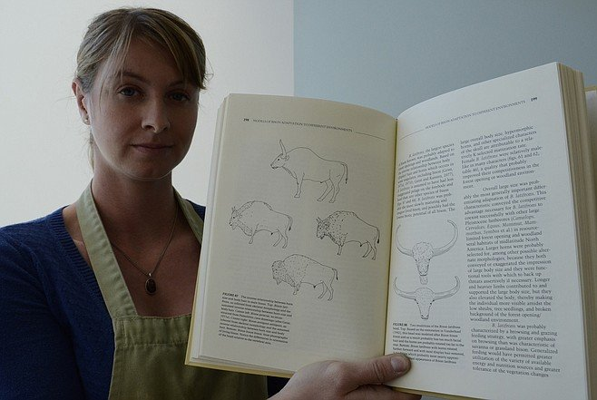 Nikki Anderson, 30, said the top drawing is the extinct bison, the modern bison is shown below.  Photo Bob Weatherston.