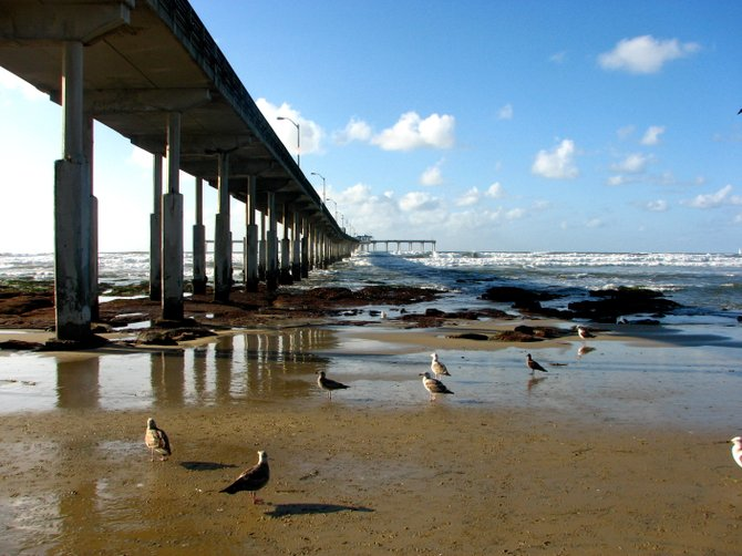 Under the Ocean Beach Pier.
