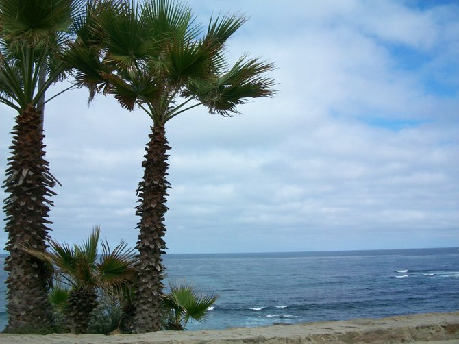 View from La Jolla Cove.