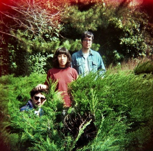 NYC's favorite psych-pop trio the Beets will fill the Void on Saturday.