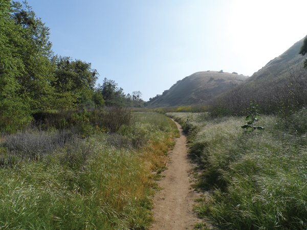 The trail is shared by hikers, equestrians, and mountain bikers. Look for gophers on the canyon hike.