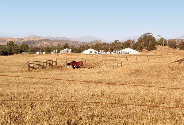 Against neighborhood and planning-group opposition, the county approved the placement of solar panels on this 43-acre patch of Ramona farmland.