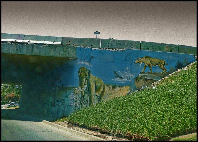 Neighborhood Photos TIJUANA,BAJA CALIFORNIA Urban Art below vehicular bridge in Zona Rio,Tijuana/Arte Urbano bajo puente en zona Rio ,Tijuana.