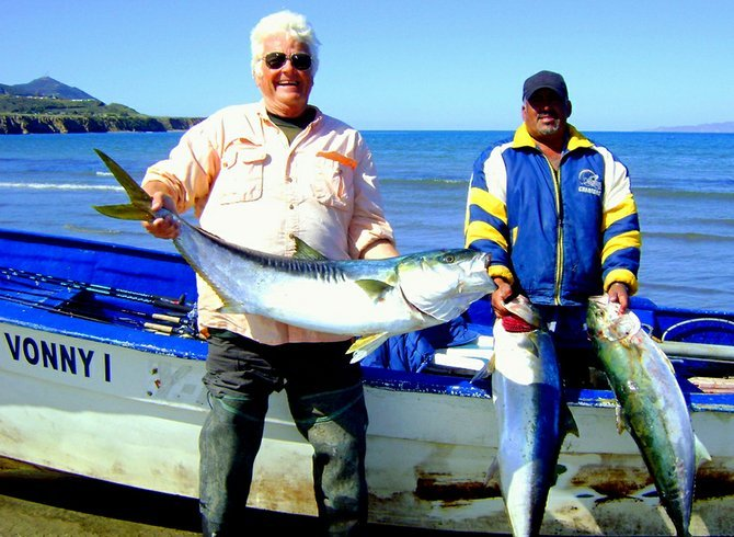 Once referred to as the 'Yellowtail Capitol of the World' Ensenada is still a great place to hook up with quality grade members of the species.