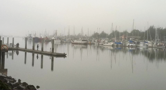 Sleepy waterfront in the Humboldt County town of Eureka, CA.