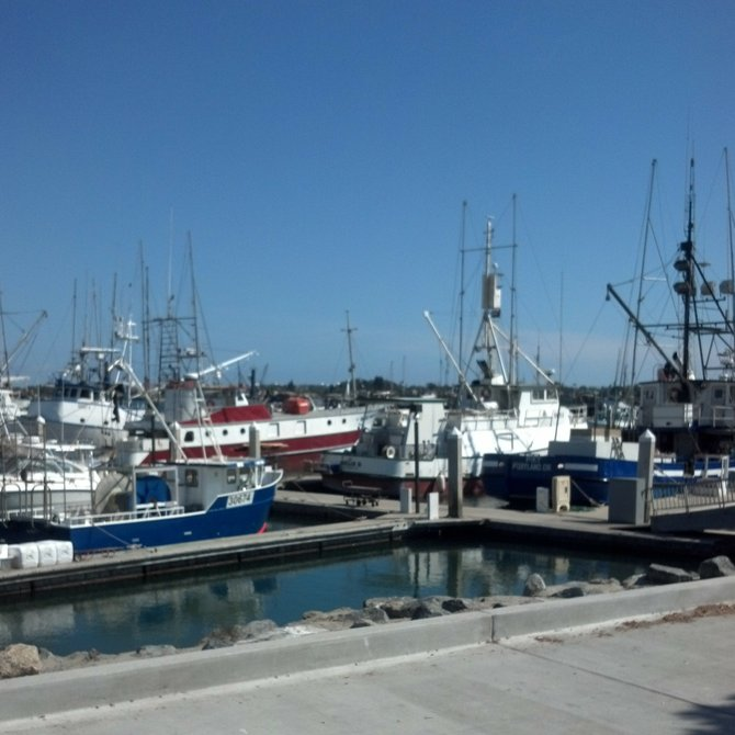Tuna Harbor, home to San Diego's commercial fishing boats