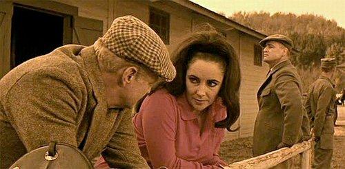 Brian Keith, Elizabeth Taylor, and Marlon Brando.