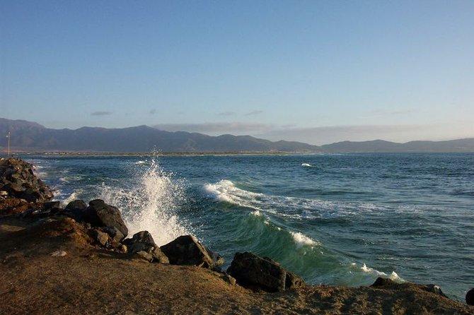 Estero Beach Lagoon, just north of The Bufadora.
