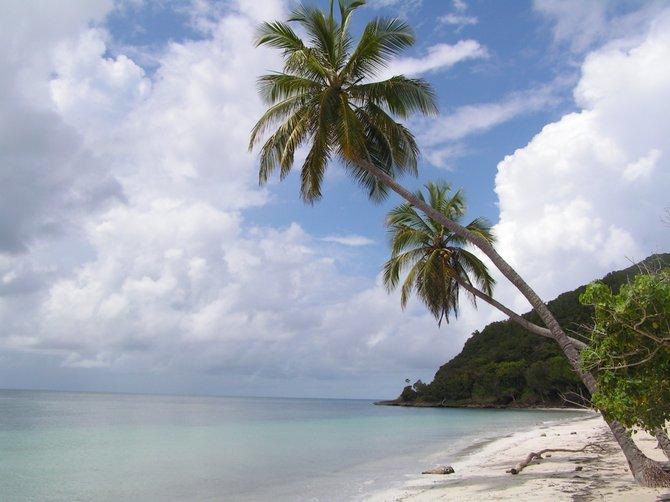 Playa Manzanillo, Providencia