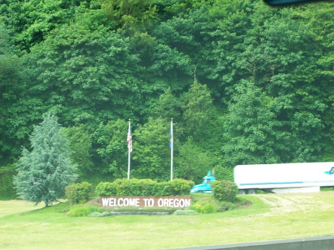 Welcome to Oregon, land of Christmas tree farms.