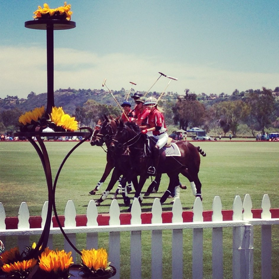 Polo players riding by