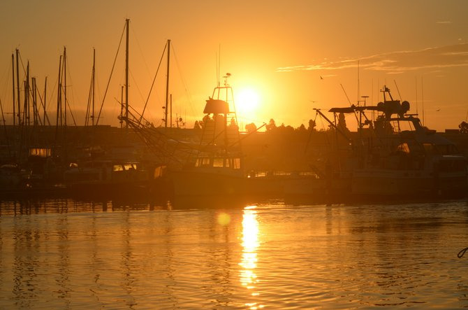 "This is a photo i captured just before a fishing trip out of San Diego harbor. I call it ""Harbor Rise"""