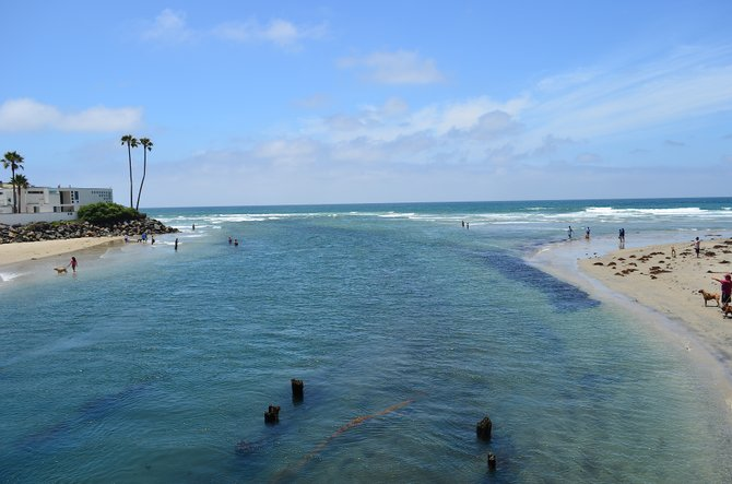 North Beach (Dog Beach), Del Mar, California, June 23, 2013