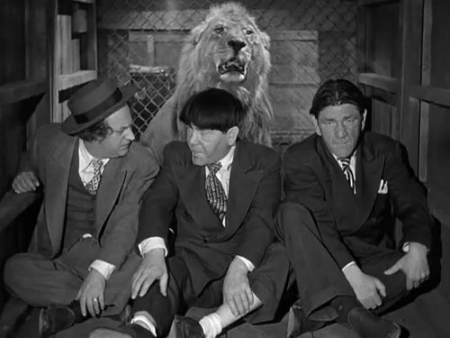 "Tanner, making a rare un-billed cameo opposite The 3 Stooges in ""Hold That Lion"" (1947)."
