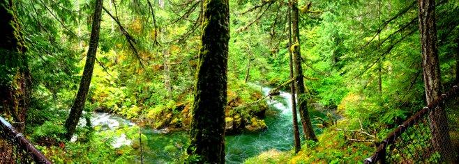 British Columbia photo