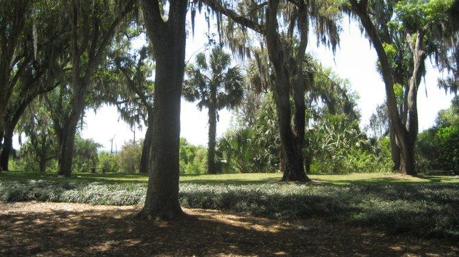 The Bok Tower gardens.